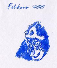 Pelikano5